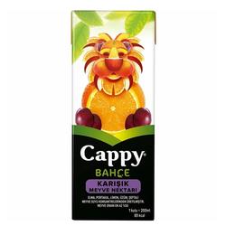 CAPPY - CAPPY 200ML KARISIK