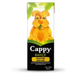 CAPPY - CAPPY 200ML KAYISI